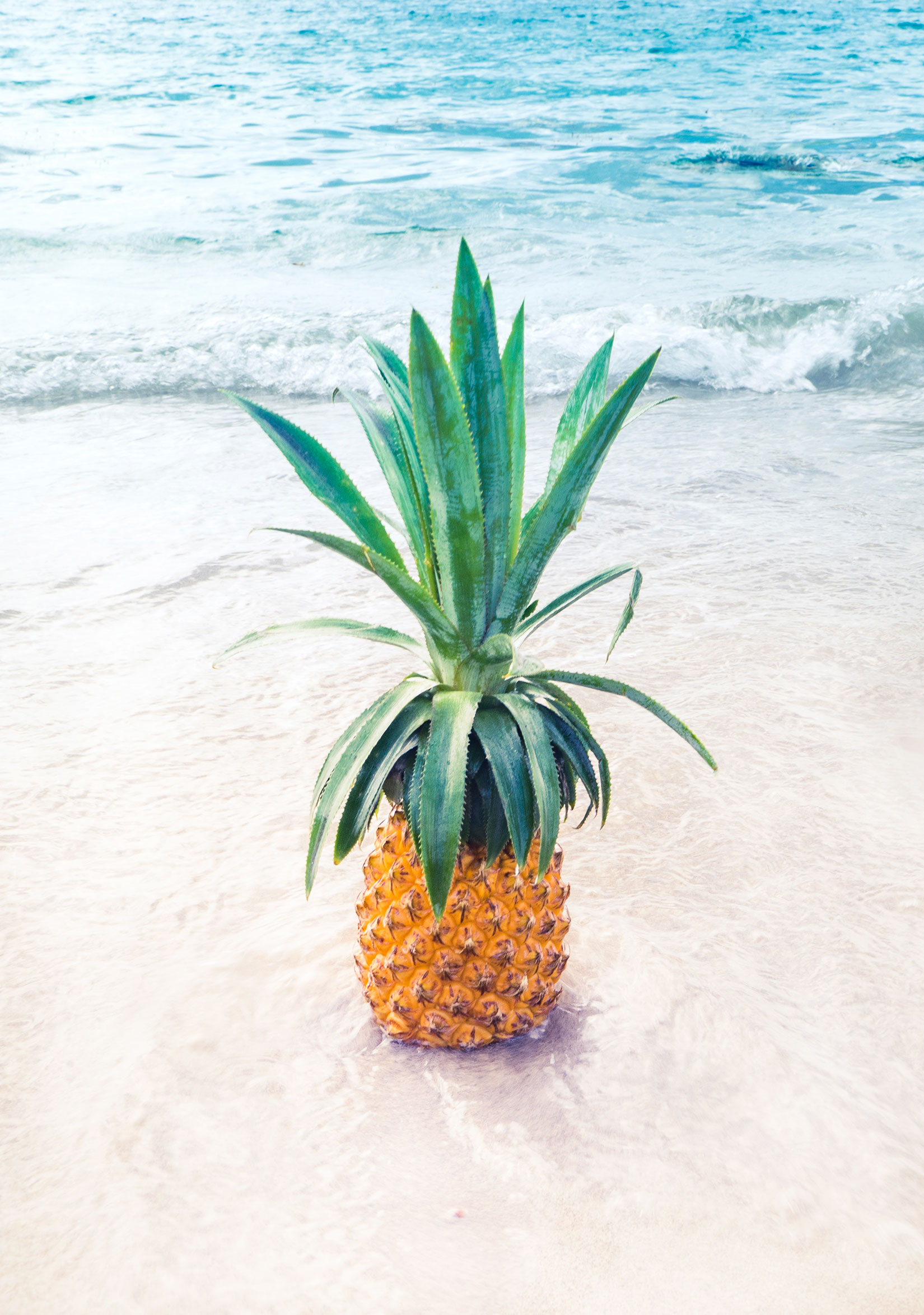 Dining: Pineapple