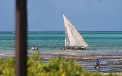 Dhow Boat at Sea