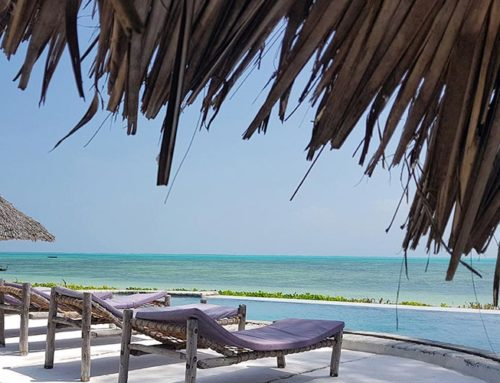 Driftwood Beach Lodge is not your typical Zanzibar Beach Resort