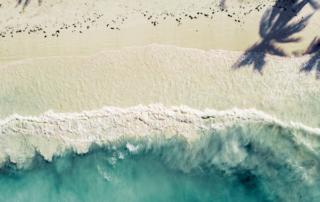 Zanzibar Shore